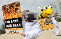 Will banning neonicotinoids end the bee genocide?